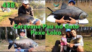 Caravana Pau no Gato no Pexe Loko - Fishingtur na Tv 438