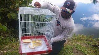 DIY Bird Cage Fish Trap! Monster Mike Fishing