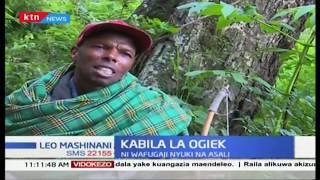 Mbinu za jamii ya Ogiek katika uvunaji asali