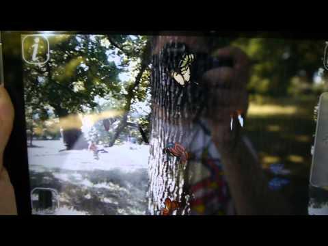 Video of AR Butterfly Burst