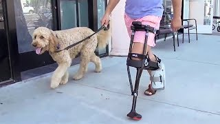Crutches and Knee Scooters Are Obsolete - See Why the iWALK2.0 Changes Everything