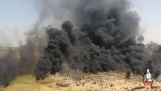 عالميدان يا غزاوي عالميدان عمر العبداللات يغني غزة HD تحميل MP3