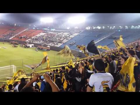 """""""GUARANÍ VS GREMIO   RECIBIMIENTO AL EQUIPO"""" Barra: La Raza Aurinegra • Club: Guaraní de Asunción"""