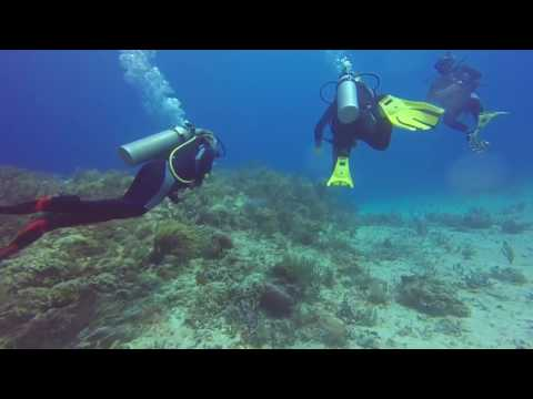 Scuba Diving  Sept 2016, Riviera Maya Mexico