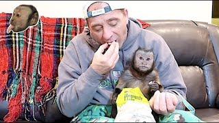 Monkey Shares PopCorn With Pet Human