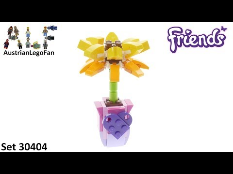 Vidéo LEGO Friends 30404 : Friendship Flower (Polybag)