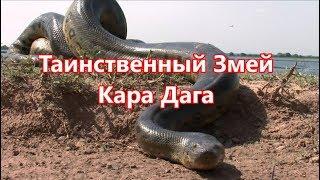 Таинственный змей Кара Дага