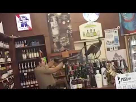 Дикий фазан набедокурил в винном магазине