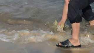 preview picture of video 'Azeem Khan, Khurram Iqbal. Fishing at yanbu (Red Sea)'