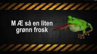 Jeg så en liten grønn frosk