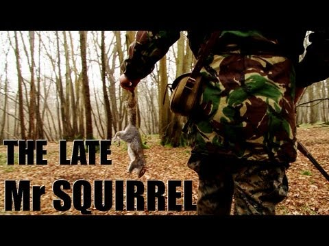 Fieldsports Britain, Mr Squirrel gets it, pigeon shooting and the schools challenge, episode 121