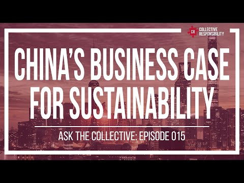 Environmental Sustainability, Business Innovation, and Personal Action | #AsktheCollective 015