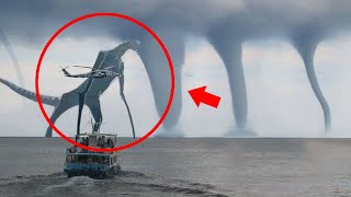 Mysterious Giant Creatures Caught On Camera