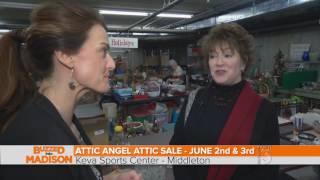 Buzzed Into Madison Attic Angel's Attic Sale