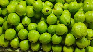 Very Healthy Masala Guava | Fresh Green Guava | Indian Street food