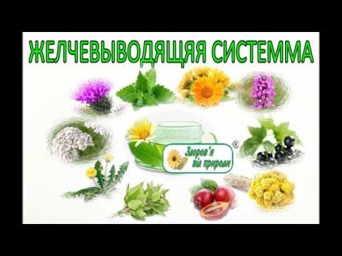 Лечение препаратами хронического вирусного гепатита с