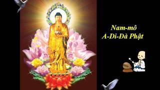 Tụng Kinh Phật A Di Đà (Âm) - Thích Trí Thoát tụng
