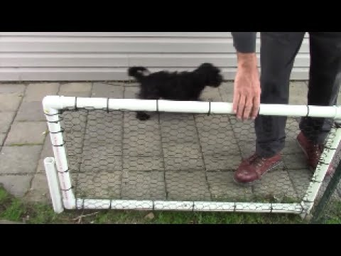 Simple Yard Gate Of PVC And 1 Inch Pipe For The Dog - Rustproof, Hinged