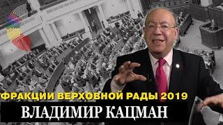 Владимир Кацман: Верховна Рада - хромая утка на обе ноги