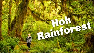 How to See Olympic National Park in One Day | Hoh Rainforest | Cape Flattery | Forks | Twilight