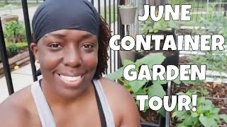 Grow Vegetables In Containers | Container Garden Tour | June