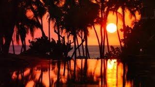 Experience Hilton Waikoloa Village
