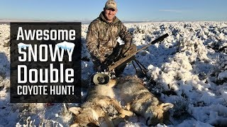 Awesome Snowy Double Coyote Hunt!
