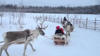Lapland 2015 / Sunway Travel Group