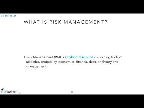 Risk Management Lesson 1: Risk, Risk Management and the Efficient Frontier