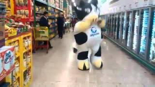 La vaca Alpura bailando en el super