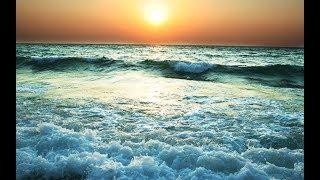 Сколько океанов и морей на Земле — все самое интересное о нашей планете I PuZ PLAY