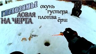 На что клюет густера зимой