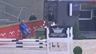 Nixon van 't Meulenhof – Stallion Competition Sentower Park 2018