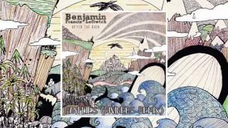 Benjamin Francis Leftwich - Mayflies (Diviners Remix)