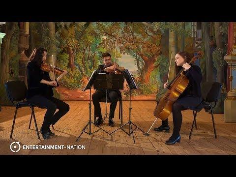 Symphony String Quartet -  Trio