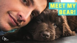 MEET MY BEAR PUPPY! | Health Benefits of Having a Dog | Doctor Mike - Video Youtube