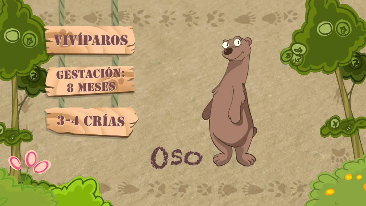 Las características del OSO