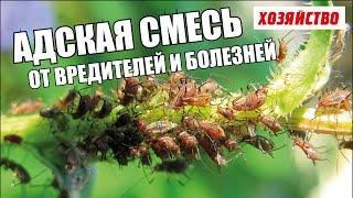 Адская смесь против болезней и вредителей в саду и огороде видео