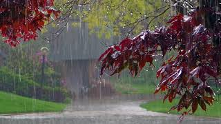 Смотреть онлайн Эффект присутствия: звуки летнего дождя
