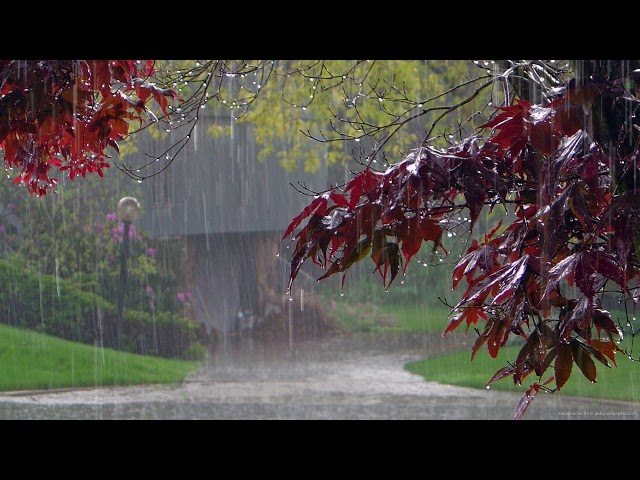 Усыпляющие звуки летнего дождя