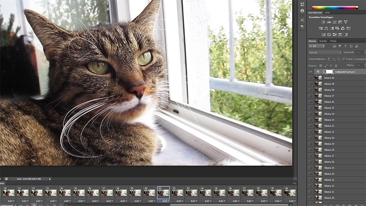 Video zu GIF-Animation umwandeln – Photoshop-Tutorial