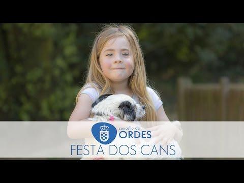 FESTA DOS CANS