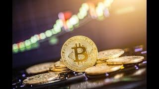 Bitcoin 2020 Bet, Grin Vs Beam, Bitcoin On Twitter & Crypto Market Crash Speculation