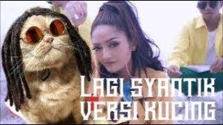 Siti Badriah Lagi Syantik Remix Versi Kucing Lucu Abis #5