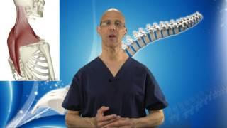 Superb Suboccipital Stretch For Neck Pain, Spasm & Headache Relief - Dr Mandell