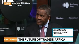 Dangote Cement Aims For IPO Next Year, CEO Says