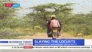 Government has been urged not relent on Locust