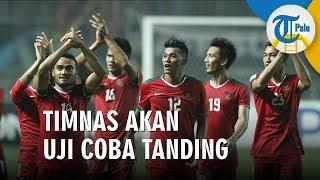 Timnas Indonesia Agendakan 2 Uji Coba Sebelum Lawan Malaysia