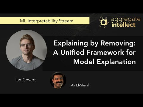 Explaining by Removing: A Unified Framework for Model Explanation