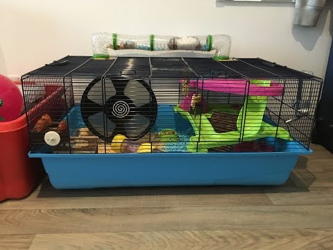 Savic Hamster Heaven Metro Cage Tour and Goodie Box Tour - Featuring  Wilbur